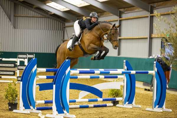 Youhorse.auction auctions international showjumping horses