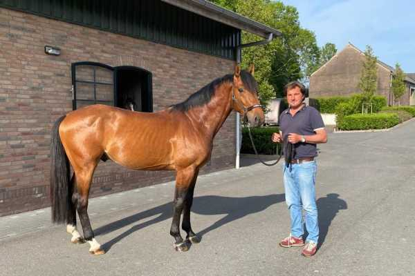 Second Youhorse.auction closes with more than 600,000 euro in turnover